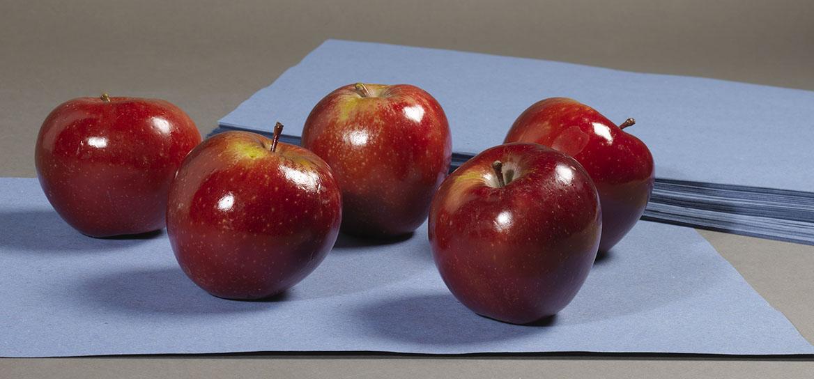 Princip separados b fruit 2